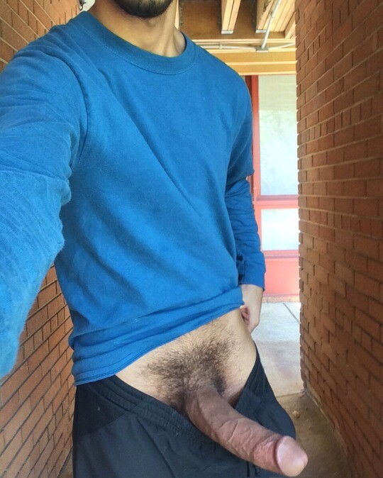 Perfect Dick - my search for the ideal cock 1904
